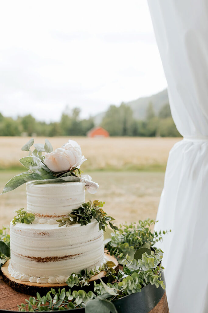 Wedding cake at Mount Peak Farm